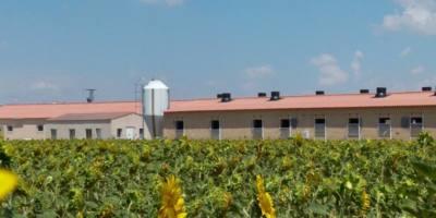 exterior_granja_porcino